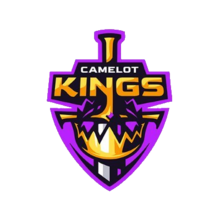 Camelot Kingslogo profile.png