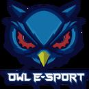 Owl E-Sportlogo square.png