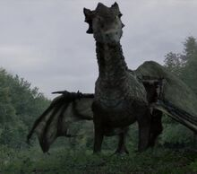 510 dragon.jpg