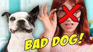 DOGS RUIN RELATIONSHIPS! (BTS)