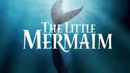 OLODisneyMovies The Little Mermaim title card