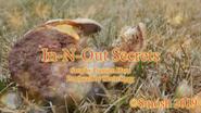 In-N-Out Secrets