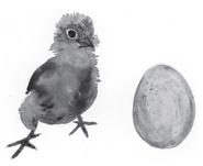 Chickandtheegg
