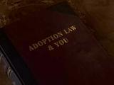 Adoption Law & You