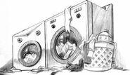 The washing machines