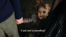 Iamnotamonkey