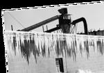 Fishingcanneryicicles
