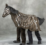 Deadhorseconcept