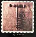 Fig4 metaltool