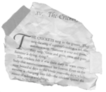 Charlottesweb snippet