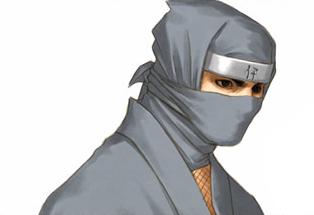 Iga ninja