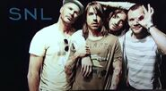 Chilli Peppers 31
