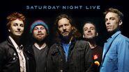 Pearl Jam 31