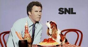 SNL Will Ferrell.jpg