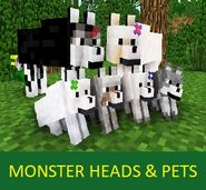 Monster Heads and Pets