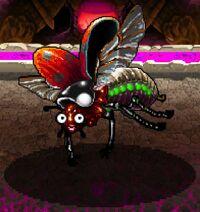 Red lady-bug beetle.jpg