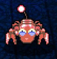 Red crab squinting.jpg