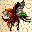 Ash beetle.PNG