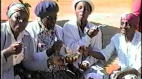 Solar Cooking in Africa - A Remarkable Technology Transfer