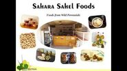 Sahara Sahel Foods Keynote at Africa Drylands Week
