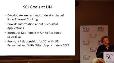 Lederman The value and structure of NGO participation at the United Nations civil society