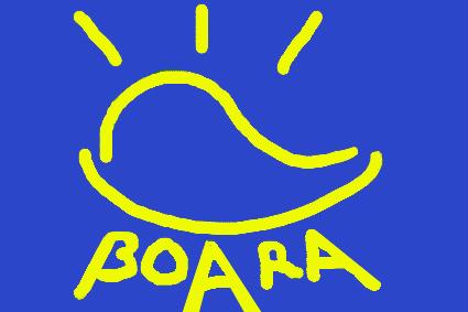Association Boara