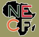Nancy Ellen Crooks Foundation