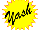 Yash Solar Stove
