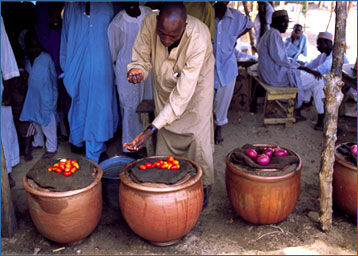 Pot-in-pot cooler.jpg