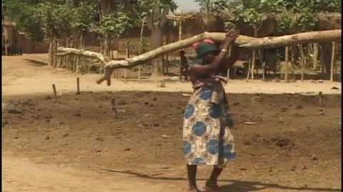 Thirsty_Planet_-_Introducing_Solar_Ovens_in_West_Africa_-_A_film_by_Ed_Carswell