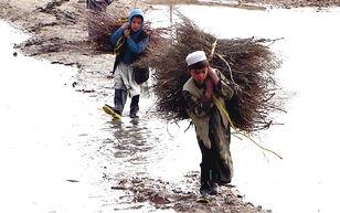 Afghan children carrying brush.jpg