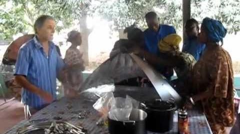 Formazione_sull'ambiente_e_sull'uso_di_energia_alternative_in_Africa_2