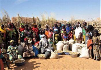 Sahara Sahel Foods 2017.jpg