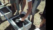 Pleno Sol No Clima da Caatinga Bolo com cobertura de brigadeiro no forno solar