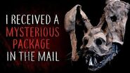 """""""I Received a Mysterious Package in the Mail"""" reading by CreepsMcPasta"""