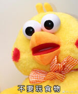 Incredibly disturbed bird