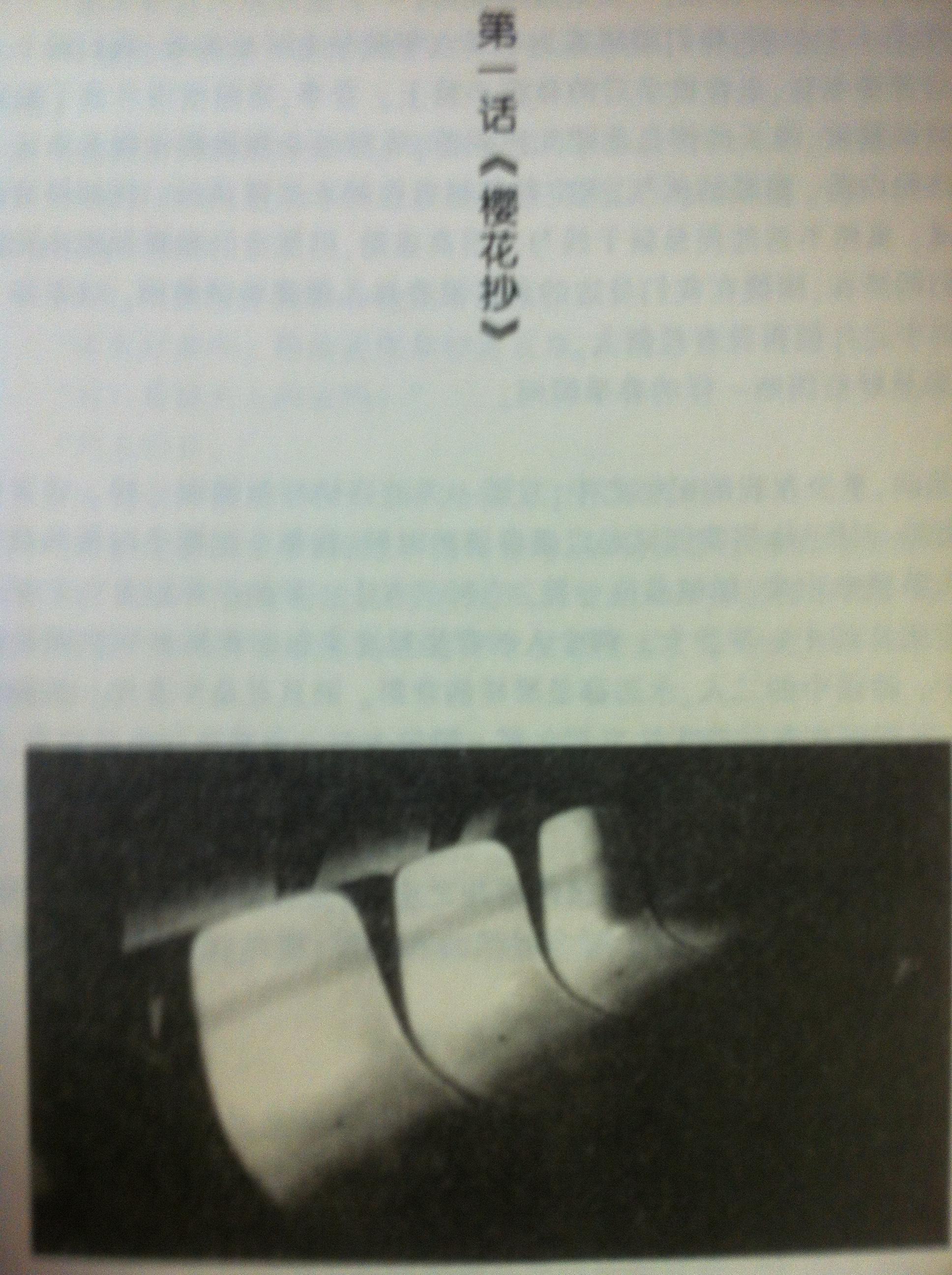 5cm/s, Đoản khúc anh đào novel illustration