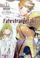 Fate strange fake novel cover 1