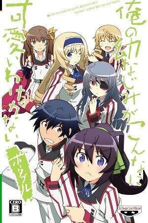 Anime Infinite Stratos.jpg