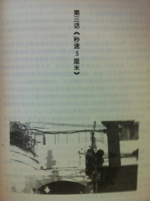 5cm/s, Năm centimet một giây novel illustration