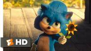 Young Sonic Scene