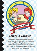 Aerial&AthenaProfile