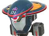 Gun Beetle