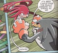 Storm VS Knuckles