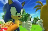 Sonic birthday dog