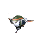 Gun Beetle StH
