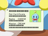 Cheesecertificate