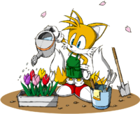 Sonic Channel - Miles Tails Prower 2013