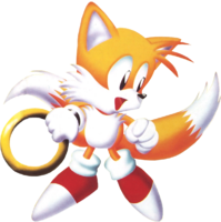 Tails 51
