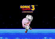 S3 Good Ending Knuckles 4